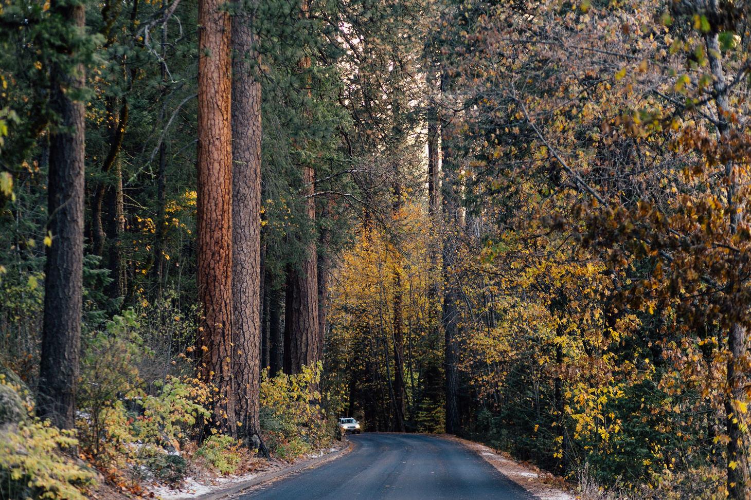 photographer-yosemite-usa-california-034