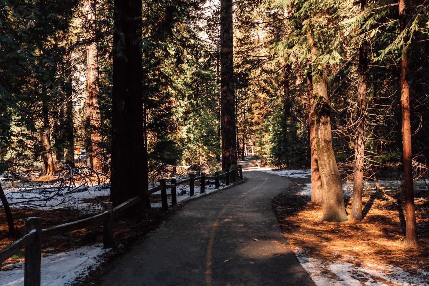 photographer-yosemite-usa-california-038