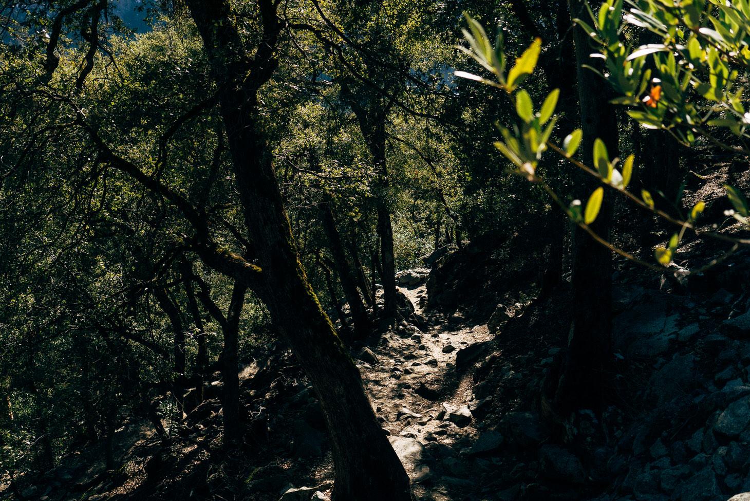photographer-yosemite-usa-california-048