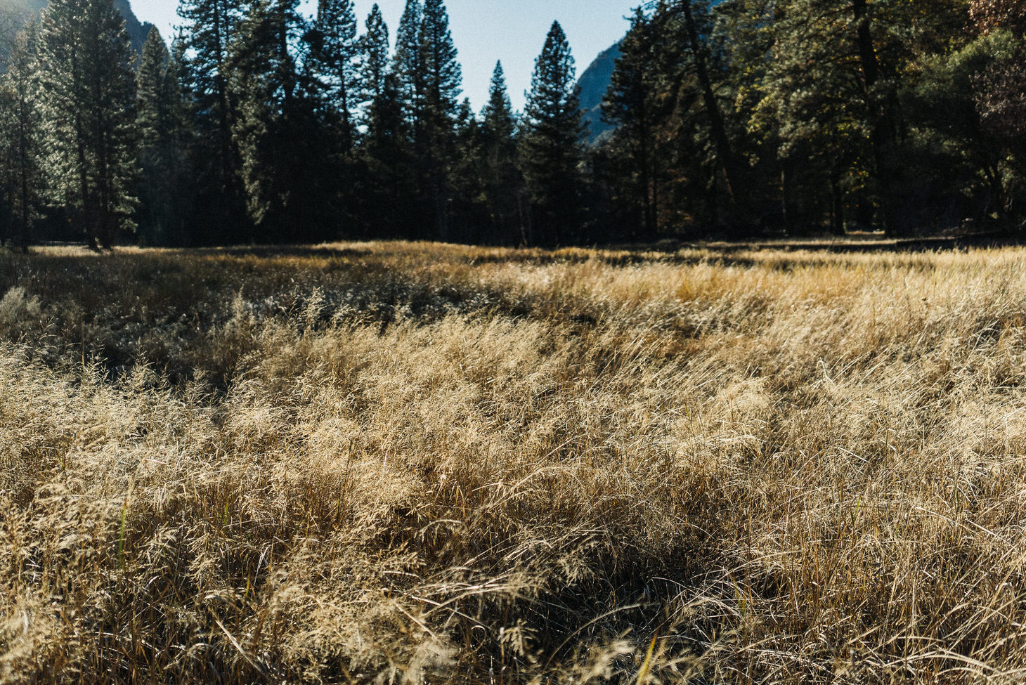 photographer-yosemite-usa-california-070
