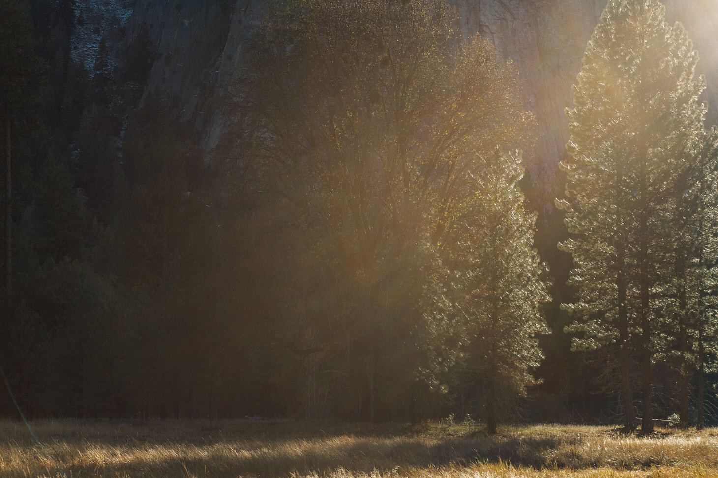 photographer-yosemite-usa-california-075